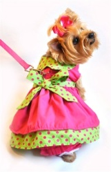 lime and pink dress set 3